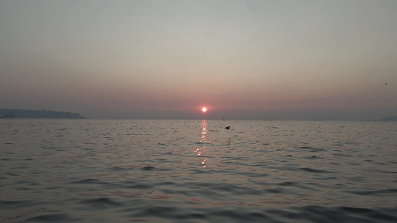 Sunset over body of water
